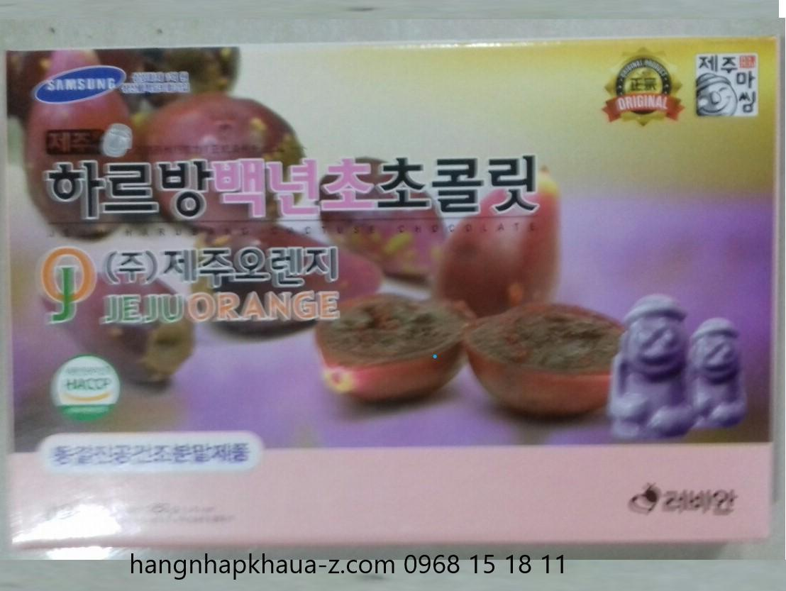 Socola Jeju  Hàn Quốc vị quả xương rồng 285g